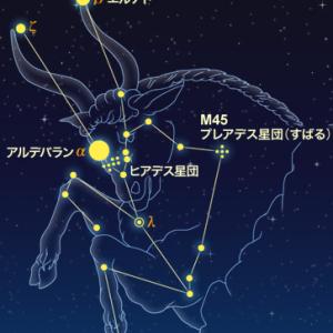 【晴れた夜は空を見上げよう】牡牛座
