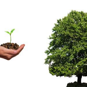 分散投資におけるESG投資と投資方針