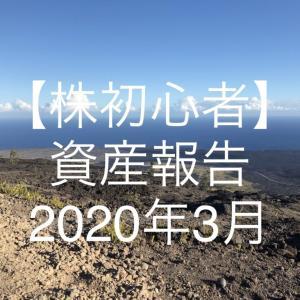 【株初心者】資産報告|2020年3月