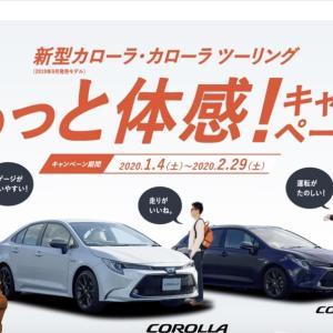 日本の大衆車 最新カローラ(セダン・ツーリング)に長期で乗ってみました!