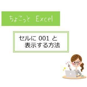 ちょこっとシリーズ Excel編 001の表示