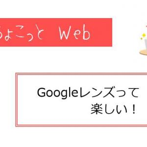 Googleレンズって楽しい!