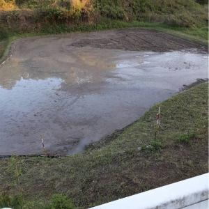 畦シートを仕込む:30年間放置された田んぼのメンテ