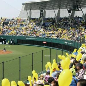 プロ野球◆二軍公式戦の全日程発表 約40試合減で11月1日に最終戦