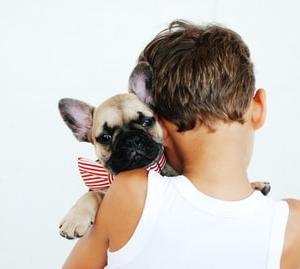犬を飼うと生活がどう変わるか〜日常編〜【病みやすい現代人は犬を飼え!】