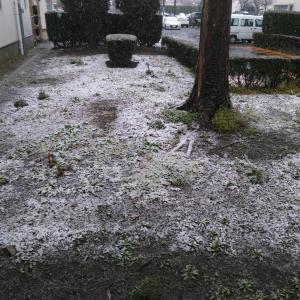 スバル期間工の休日 〜群馬に雪が降った日、俺はゆで卵作ってた編〜