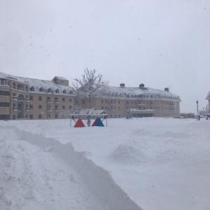 子供とスキーに行こう‼ ロッテアライリゾート レポート