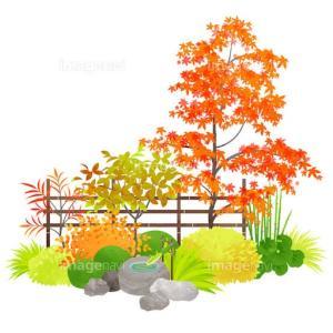 庭改造計画を妄想中
