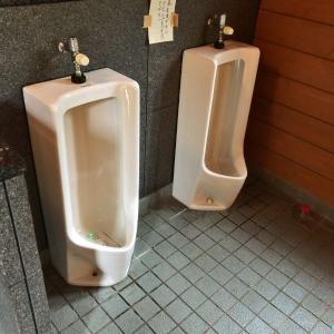 【北斗市】湯の沢水辺公園おすすめのキャンプサイトの場所は?珍しい無料のオートキャンプ場