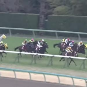【AJCC2020】レース回顧・各馬の次走の狙い目