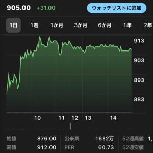 株の話(ど素人ですよ)
