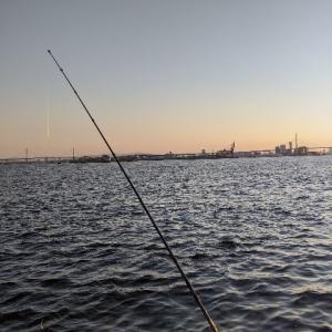 釣行:大阪 シーサイドコスモ サバゲー