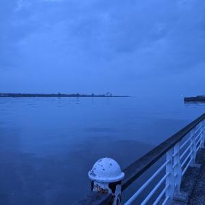 釣行:大阪 舞洲 サバ祭り たまに鯵