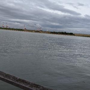 釣行:大阪 舞洲  小潮の釣り 鯖サバ〜