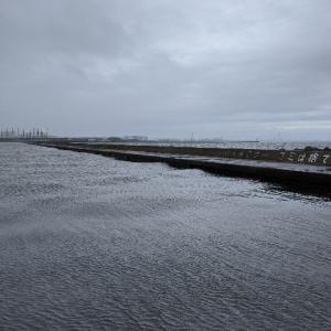 釣行:兵庫県 西宮ケーソン やはり鯖サバ…