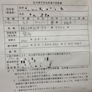 狂犬病予防注射猶予診断書
