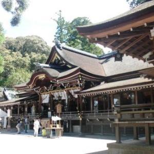 神社とトカゲと龍雲(不思議な写真)