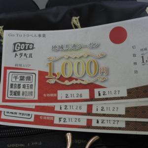 地域共通クーポン3000円の使い道