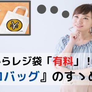 7月からレジ袋が「有料」に。今おすすめの『エコバッグ』はコレ!