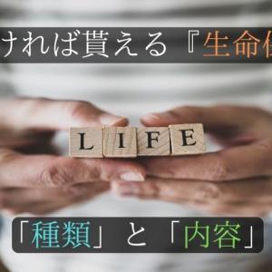 生き続ければお金が貰える『生命保険』がある?「種類」と「内容」