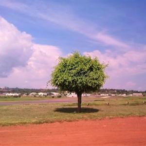 ウガンダは、青い空と赤い大地が印象的かも!