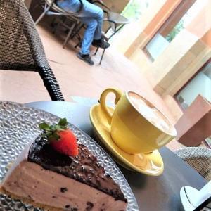 おやつはブルーベリーチーズケーキ(^з^)-☆