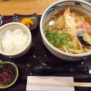日本国内で食べる天ぷらうどんが、美味しすぎるのは?
