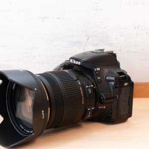 【ボケに感動】SIGMA 17-50mm f/2.8レビュー!まさにAPS-C用の大三元レンズ