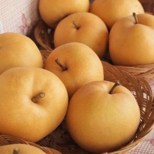 悩んでるママ達必見‼︎ 離乳食で梨をそのまま食べさせていいのはいつから大丈夫なの??〜時期別レシピも紹介〜