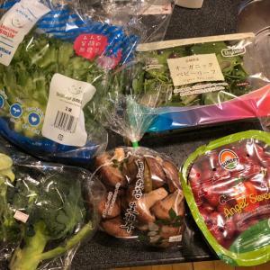 【おうち時間増しでも健康に】コストコの野菜はとにかく優秀で美味しい!