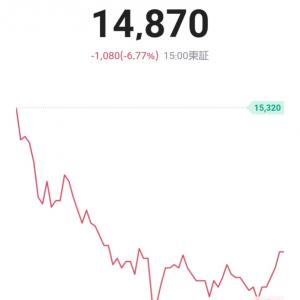 大失敗の大暴落/24日目*300万円への道