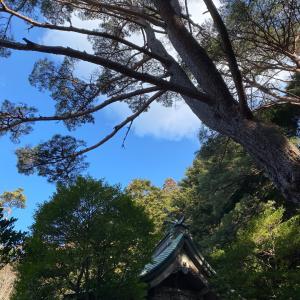北海道と福島の地震。