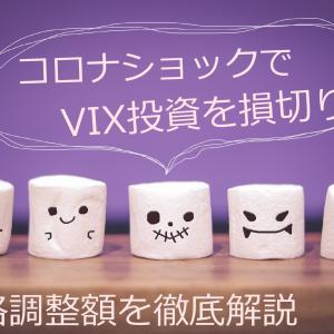 VIX投資で損切りしました〜米国VIの価格調整額を解説〜