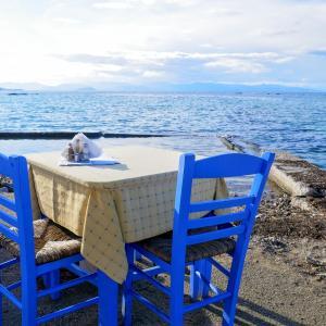 目の前には壮大な海!ギリシャ・アイギナ島『絶景を眺めながら食事を楽しめるレストラン』に行ってみた!