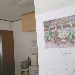 【厳選】セリア購入品!キッチン用品多めの便利なものたち