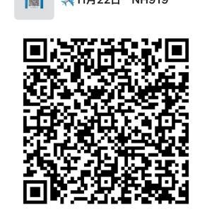 11月22日 NH919に搭乗予定の方は参加可能です。