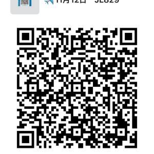 11月12日 JL829に搭乗予定の方は参加可能です。