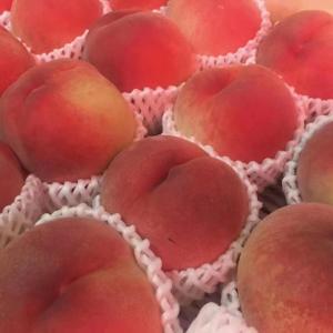 桃の品質・生産量日本一❗️山梨・一宮の農園直送の桃です