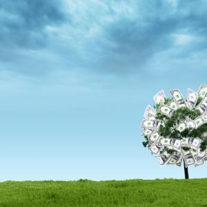 ideco 拠出金と資産残高の推移 2020