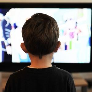 息子(2歳3か月)のテレビの時間を減らしてみた結果【テレビと育児】