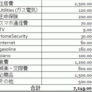 【アメリカ・コロナウイルス】2020年3月時点の月々の支出と収入ー我が家の生活費を公開・大幅に家計簿の見直し
