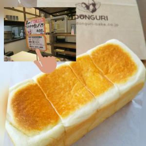 1月29日~どんぐりパン屋さんと発酵ライフ