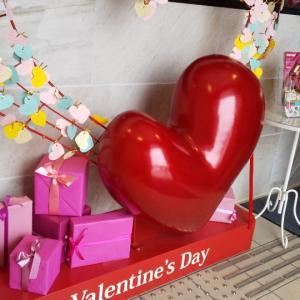 2月14日~St.Valentineと発酵ライフ