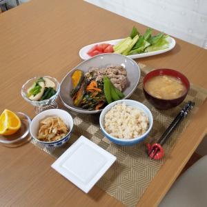 5月3日~春の野菜と発酵ライフ