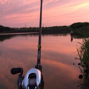真夏の怪魚釣り🎣