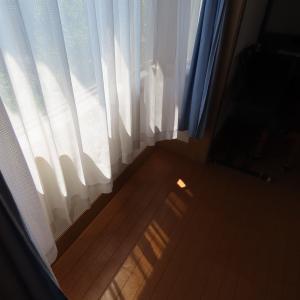 大掃除シーズン到来!手はじめはカーテンと窓
