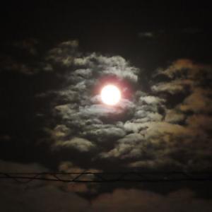 中秋の名月で月光浴