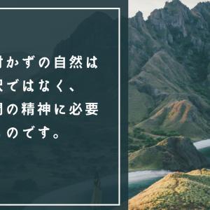 【つくばパワースポット】筑波山神社 〜紫陽花に囲まれて〜