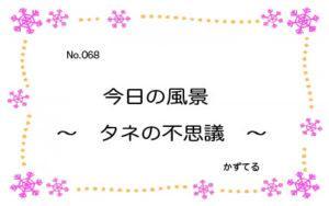 『 今日の風景 〜 タネの不思議 〜 』