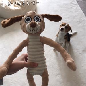 ぶさいくなおもちゃ